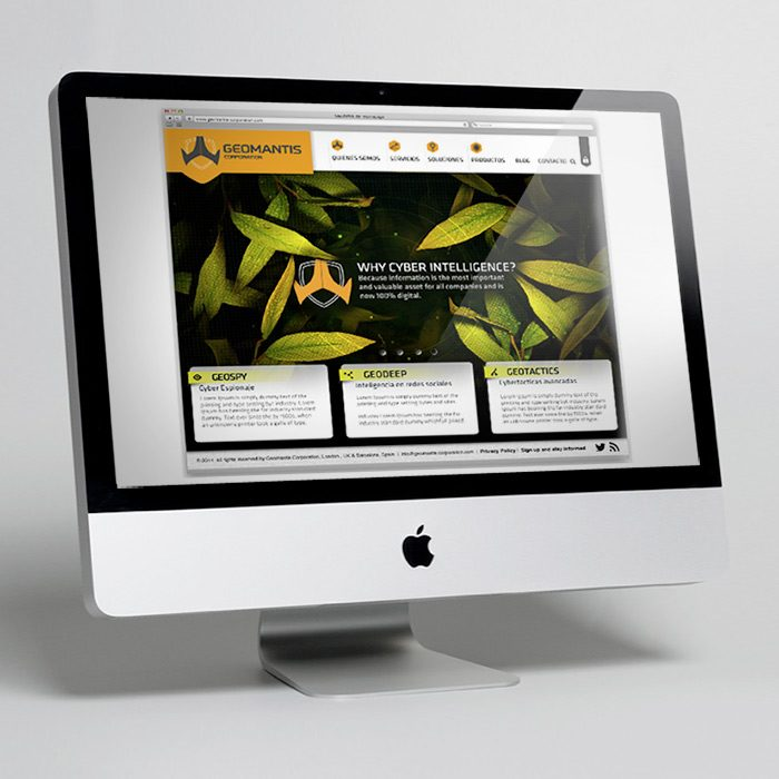 GEOMANTIS CORPORATION<br><h7>&#8211; logo, identity &#038; web design &#8211;</h7>
