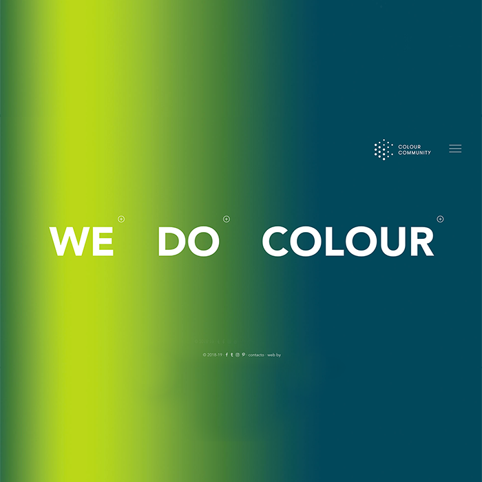 THE COLOUR COMMUNITY <br><h7>– web design –</h7>